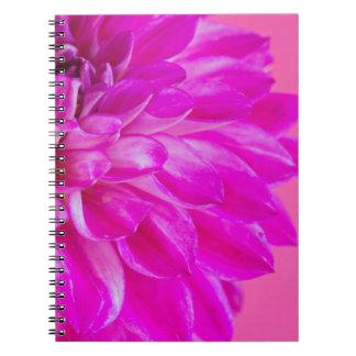 Makrobild der Blumendahlie auf rosa backgroun Spiral Notizblock