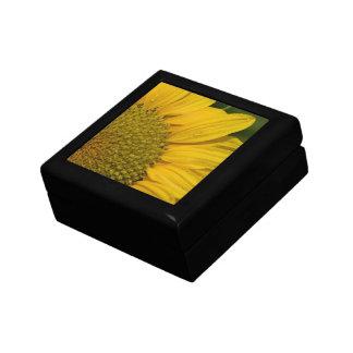 Makrosonnenblume mit Regentropfen Erinnerungskiste