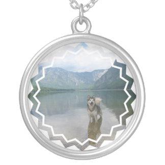 Malamute-Hundehalskette Versilberte Kette