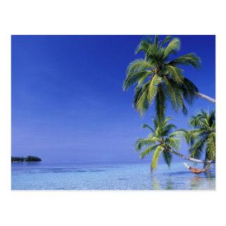 Malediven, Felidhu Atoll. Mann, der in der Postkarte