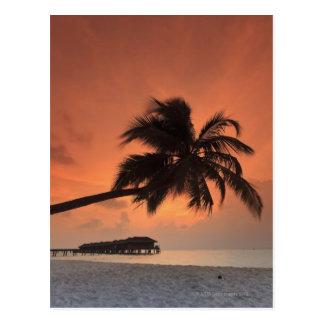 Malediven, Meemu Atoll, Medhufushi Insel, Postkarte