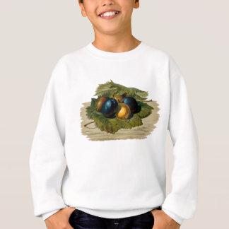 Malen mit 5 Vintages Pflaumen Sweatshirt