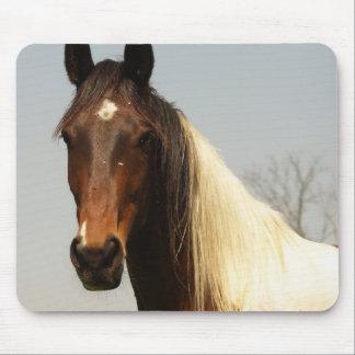 Malen Sie Pferdemausunterlage Mauspads
