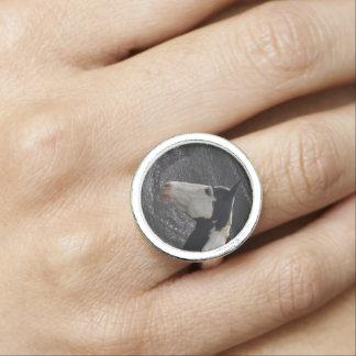 Malen Sie Pinto-Pferd auf Leder-Effekt reitenring Ring