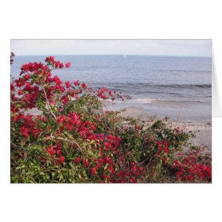 Malibu Karte