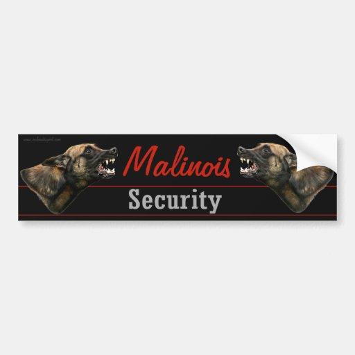 Malinois Sicherheits-Autoaufkleber