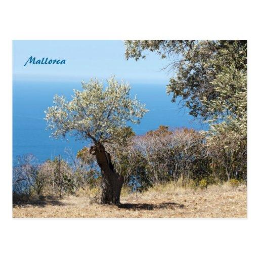 Mallorca-Postkarten