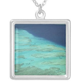 Malolo Wallriff vor Malolo Insel, Fidschi 2 Versilberte Kette