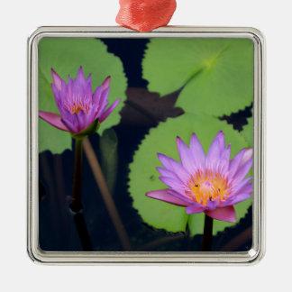 Malvenfarbene rosa Wasserlilien Silbernes Ornament