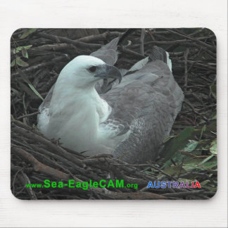Mama, die auf 2 Eiern Mousepad 2013 horizontal sit
