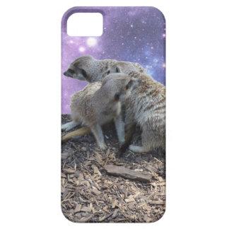 Mama Meerkat und Welpe, iPhone 5 Hüllen