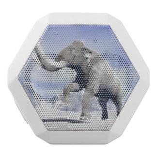 Mammut im Wind Weiße Bluetooth Lautsprecher