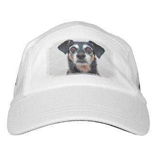 Manchester Terrier X - Jordanien - Derr Headsweats Kappe