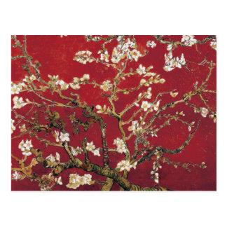 Mandel blüht rote Vincent van Gogh-Kunst-Malerei Postkarte