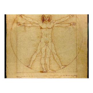 Mann-Anatomie Leonardo da Vincis Vitruvian Postkarte
