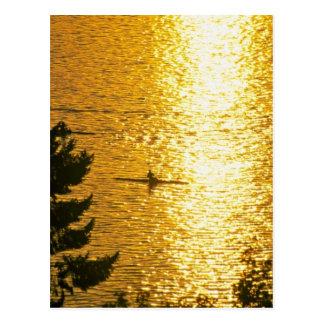 Mann-Rudersport Postkarte