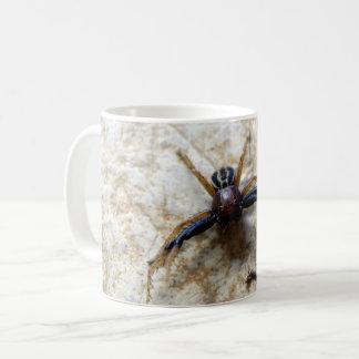 Männliche Grundkrabben-Spinnen-Wanzen-Tasse Kaffeetasse
