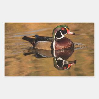 Männliche hölzerne Ente auf goldenem See Rechteckiger Aufkleber