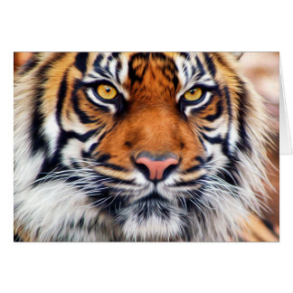 Männliche sibirischer Tiger-Farben-Fotografie Karte