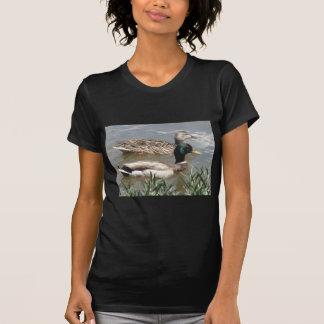 Männliche u. weibliche Stockente T-Shirt