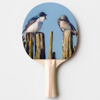 Männliche und weibliche Baum-Schwalbe Tischtennis Schläger
