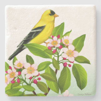 Männlicher Goldfinch im Steinuntersetzer