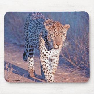Männlicher Leopard Mousepad