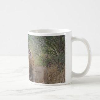 Männliches Löwe-Brüllen Kaffeetasse