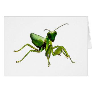 Mantis Karte