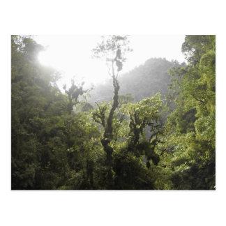 Manu Nationalpark Postkarte