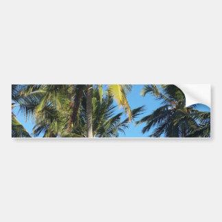 Maragogi Palmen Autoaufkleber