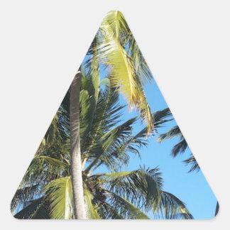 Maragogi Palmen Dreieckiger Aufkleber