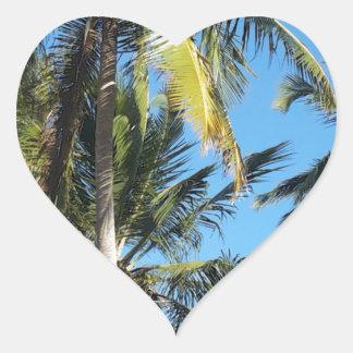 Maragogi Palmen Herz-Aufkleber