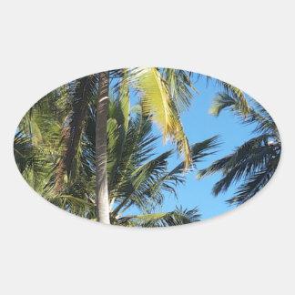 Maragogi Palmen Ovaler Aufkleber