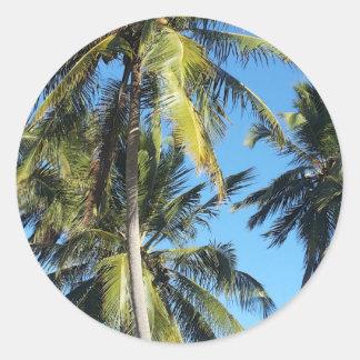 Maragogi Palmen Runder Aufkleber