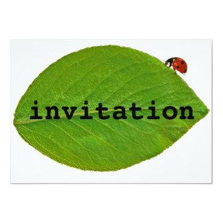 Marienkäfer 12,7 X 17,8 Cm Einladungskarte