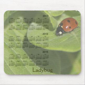 Marienkäfer-3-jähriger 2013-2015 Kalender Mousepad