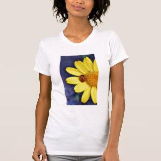 Marienkäfer auf Blume