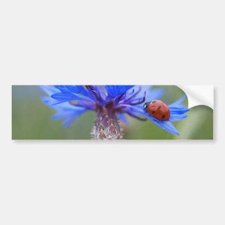 Marienkäfer auf einem blauen Cornflower Autoaufkleber