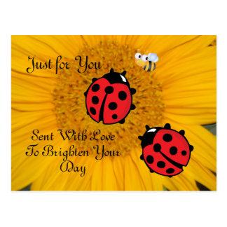 Marienkäfer-Biene und Sonnenblume-Postkarte Postkarte