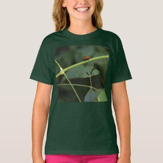 Marienkäfer-Drahtseil-Wanderer T-Shirt