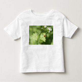 Marienkäfer flieg... kleinkinder t-shirt