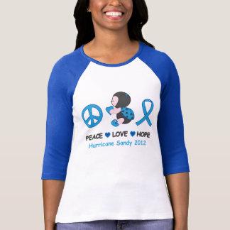 Marienkäfer-FriedensLiebe-Hoffnungs-Hurrikan Sandy T-Shirt