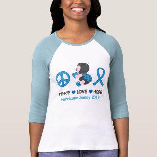 Marienkäfer-FriedensLiebe-Hoffnungs-Hurrikan Sandy Shirt