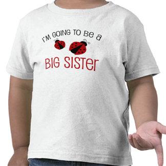 Marienkäfer-große Schwester zum zu sein
