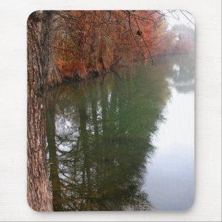 Marienkäfer-Lake Butler Hinterfall 2 in Austin Mousepad