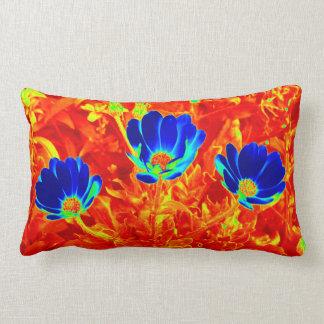 Marine-Königsblau-Gänseblümchen auf Orange - Lendenkissen