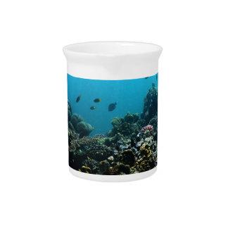 Marineumwelt im Pazifik Krug