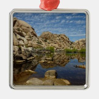 Marktschreier-Verdammungs-Reflexion am Silbernes Ornament