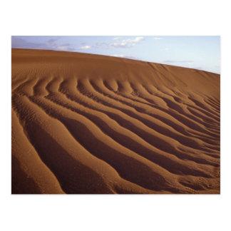 Marokko, Tinfou nahe Zagora), Sanddünen, Postkarte